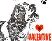 Springer Spaniel Valentine Card