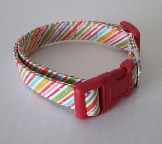 SALE Adjustable Dog Collar - Fruit Stripe Handmade