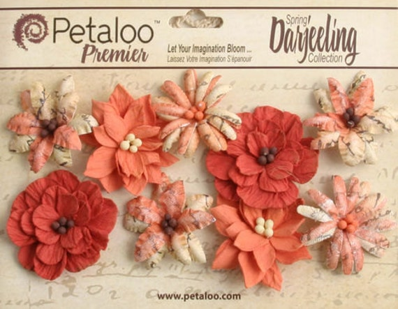 Petaloo - Small Wild Blossoms (9 pack) - Paprika
