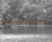 Nature photograph, landscape picture, black and white 8x10
