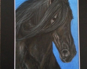 Black Horse Colored Pencil Drawing