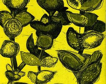 Yellow Succulent  Etching & Aquatint Hand Pulled Original Print - OOAK