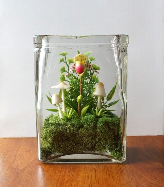 Tiny Lady Slipper Orchid Terrarium in Repurposed Vase
