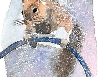 ACEO Limited Edition 3/25-Hold on, Squirrel, Gift for animal lovers, Art print of an original ACEO watercolor, Home deco idea