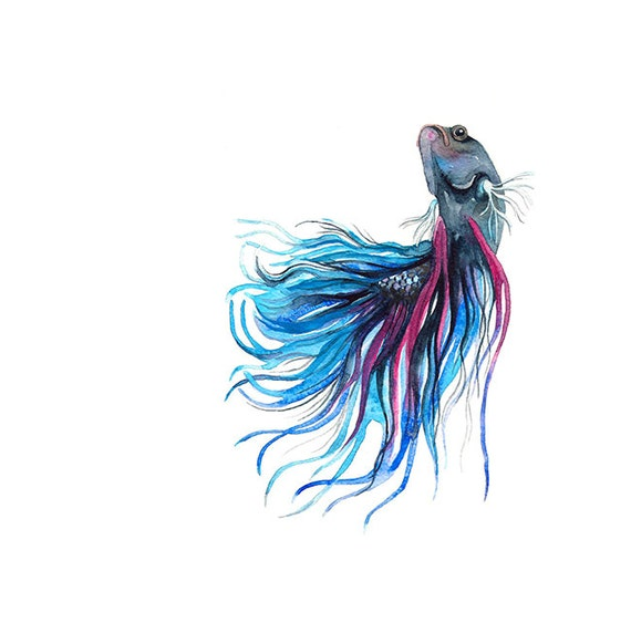 Items Similar To Siamese Fighting Fish Watercolor