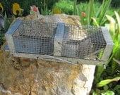 HAVAHART Animal Trap Vintage :)