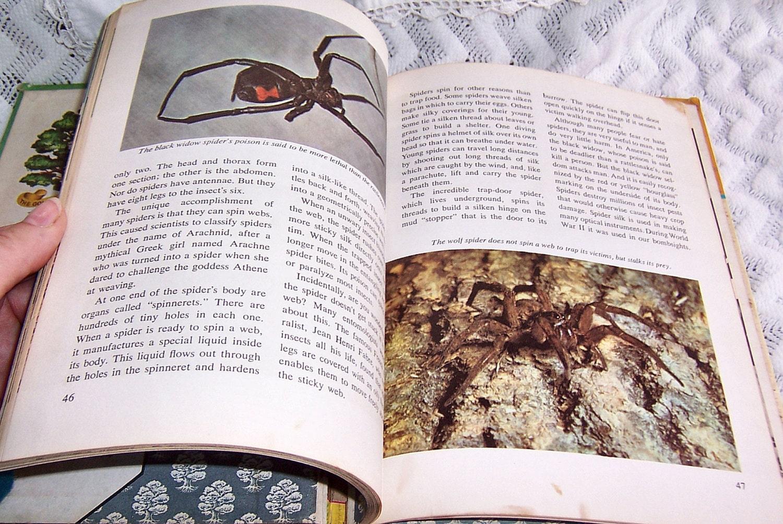 Scrapbook paper books - Sold By Sierrastreasure