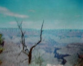 Vintage Grand Canyon with Tree - Arizona - retro - Holga - medium format - 5x5 square color matte print