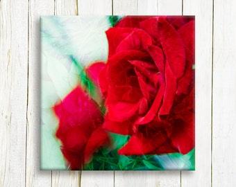 Red roses on canvas - ready to hang canvas print - housewarming gift