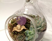 You Are an Angel Miniature Succulent Terrarium