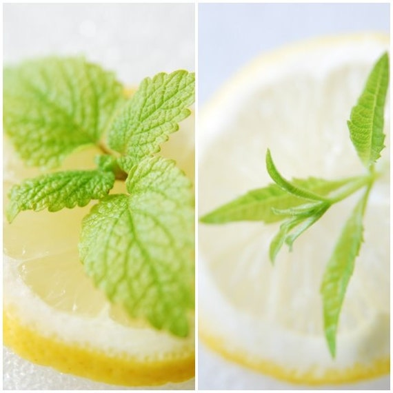 1/3oz Natural Lemon Verbena Perfume Oil, Fragrance Oil in Roll-on Bottle, Lotions and Potions