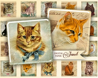 Cats - squares image - digital collage sheet - 1 x 1 inch - Printable Download