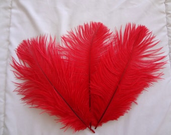 Ruby Red Ostrich Drab Feathers Wholesale Bulk Supply Craft Costume Design