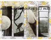 CHOOSE ONE BOOKMARK - Black&White: Moon, Crow, Feather, Window.