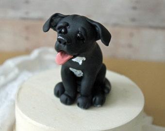 Pin Dachshund Dogs Cake Decorating Community Cakes We Bake