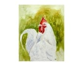 Original watercolor painting white rooster Animal illustration