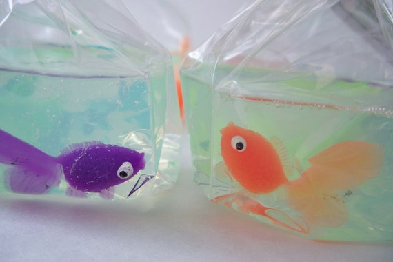 fish in a bag soap how to