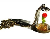 Beauty and the Beast Necklace -  Miniature Terrarium