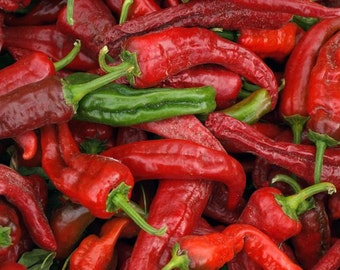 Heirloom, New Mexico Chile Pepper, Sundried, Grown on Our Farm, 20 Garden Seeds