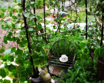 Miniature itty-bitty fairy garden