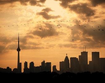 city cityscape Toronto life fine art photography water Toronto Island fathers day skyline orange black