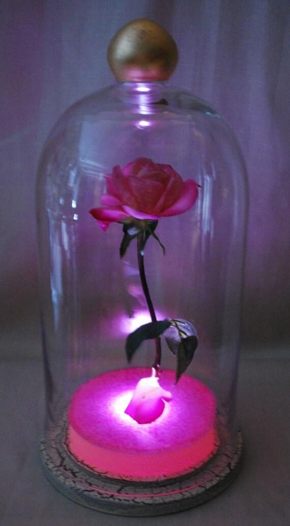 Illuminated Enchanted Floating Pink Rose Fairy By