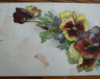 vintage POSTCARDS ... Floral SPRAY Purple PANSY stamped 1909  ...