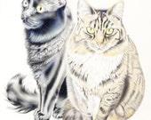 Cat print, cat art, Maine Coon cat, cat painting, cat illustration, cat drawing, black cat, 11 X 14 inches, cats