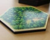 DIY Custom Blank Hexes Tiles (19 Hexes)