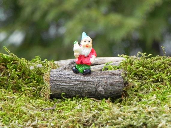 Gnome Garden: Miniature Gnome On Log Fairy Garden Accessories Terrarium