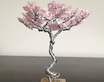 Mini Zen Garden Tree - Spring