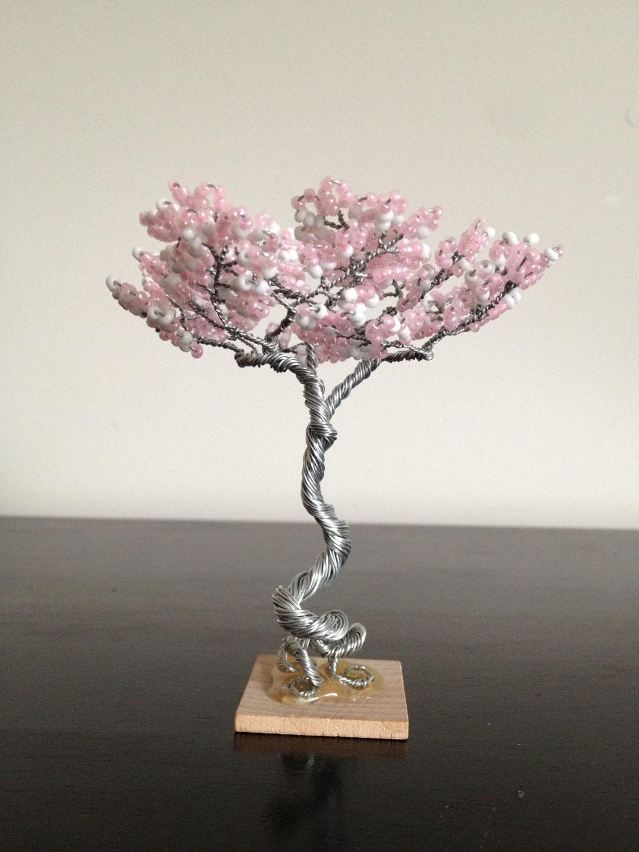 Mini zen garden tree spring for Zen garden trees