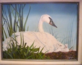Original Oil painting - White Swan and Babies- wildlife painting - 12x16 - animal art - framed art