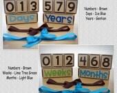 Newborn Infant Toddler Child Photo Prop Days Weeks Months Years Block Set