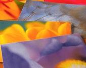 Favorite Flowers  - set of 5 botanical post cards