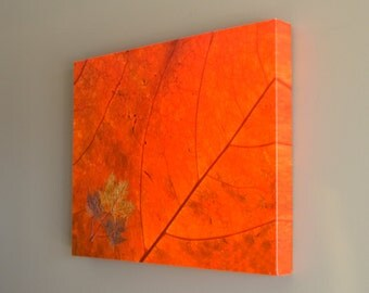 Maple Leaf Canvas Gallery Wrap, Orange Nature Photo, Mixed Media, Embedded Leaves