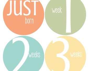 Newborn Baby Stickers, Baby Milestone Stickers, Baby Stickers, Neutral Baby Stickers, Baby Shower Gift