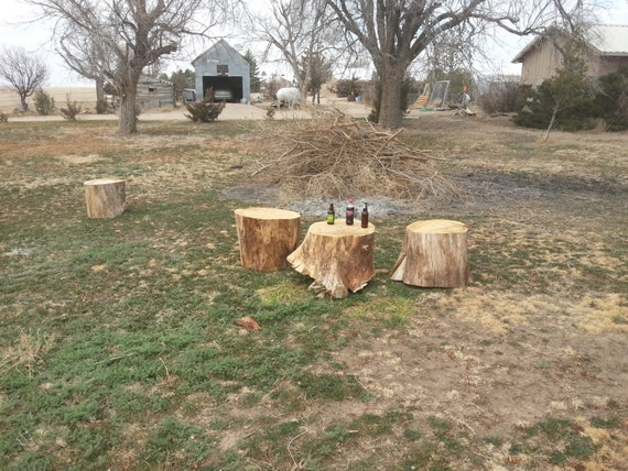 Tree stump table or seating for outdoor enjoyment or indoor style.