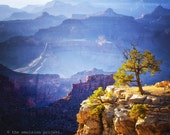 THE DESERT COLLECTION, photograph, Grand Canyon, sunset, desert, dry, yellow, gold, orange, geology, Arizona, colorful, hot