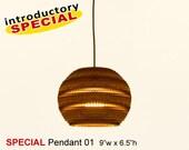 SPECIAL Pendant Lamp 01