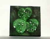 mini painting: Shamrock, dew drops, green