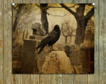 Corvidae, Earth Tones, Raven, Dark Infused Light, Real Cemetery Crow, Halloween Art - Surly Raven