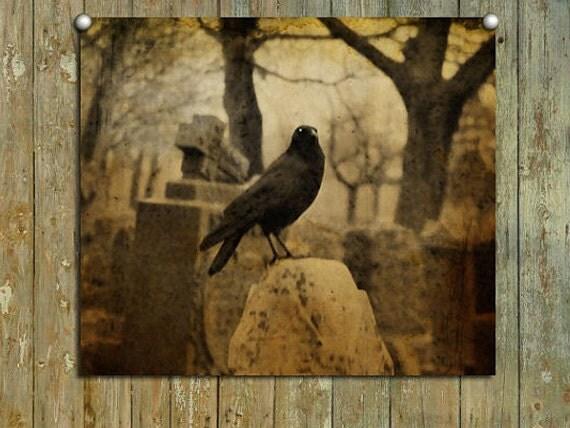 Corvidae, Earth Tones, Raven, Dark Infused Light, Real Cemetery Crow, Halloween Art - Surly Raven