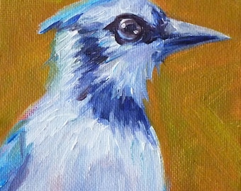 Blue Jay Oil Painting, Original Bird on Canvas, Small 4x5 Wildlife Painting, Wall Decor, Bird Portrait, Woodland Creature, Feathers