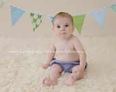 Baby Boy Flag Bunting Your Choice of Trim, Designer's Choice Flags Boy's Photo Prop, Party Decoration. 7 Medium Flags in Boy Colors, Prints.