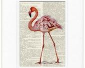 pink flamingo I print