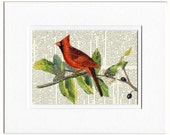 Red Cardinal dictionary page print