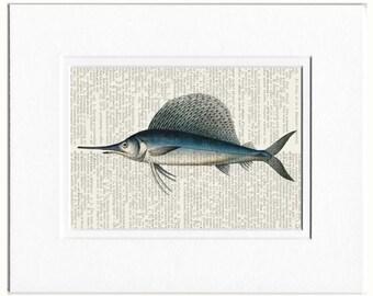 sailfish dictionary page print