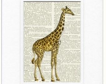 giraffe print dictionary page print