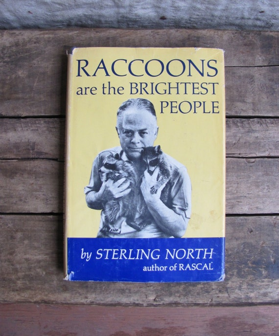 """vintage 1960s book // """"Raccoons are the Brightest People"""""""